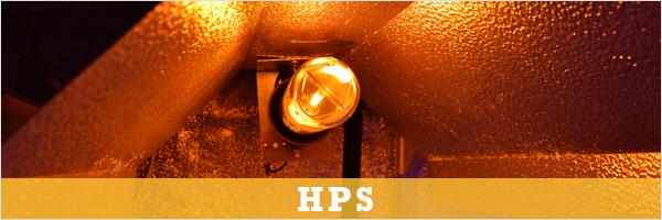 HPS verlichting